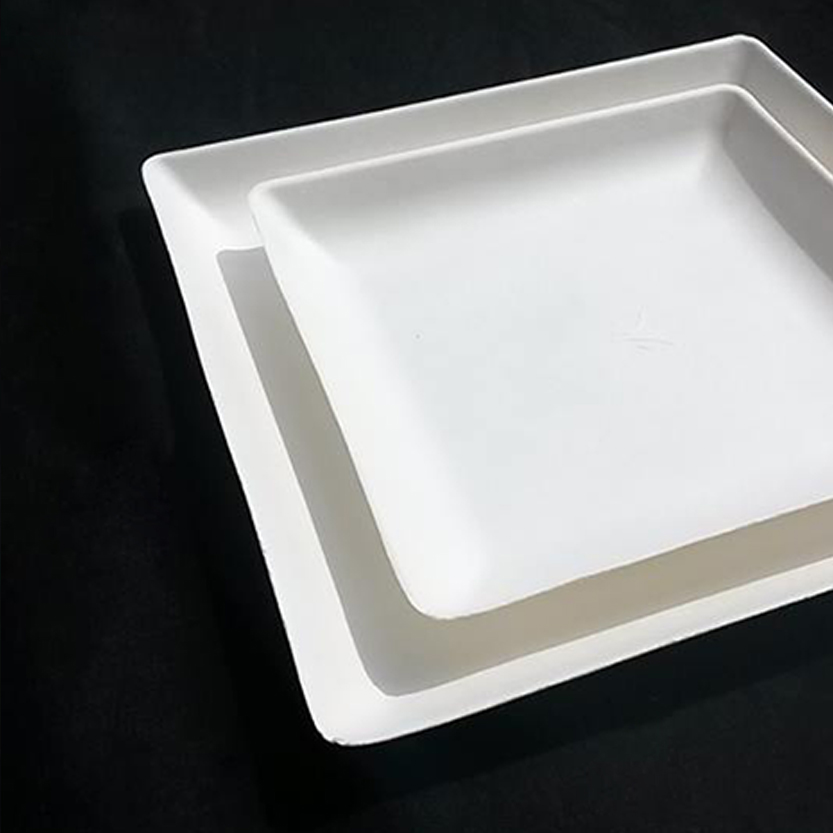 piatti-eco-quadrati-1
