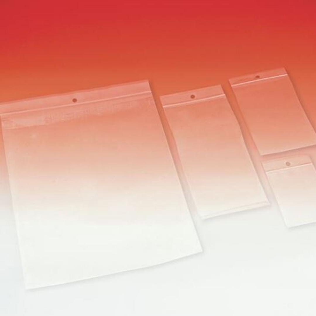 busta trasparente con zip